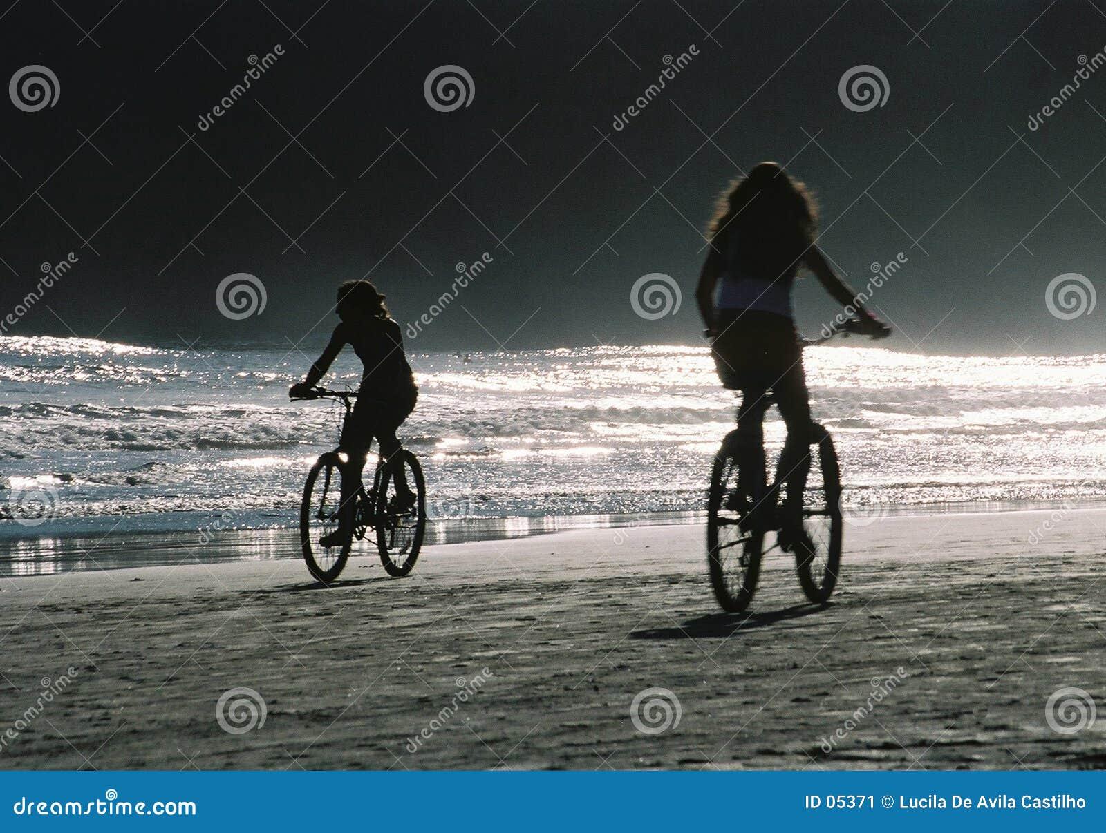 下午自行车