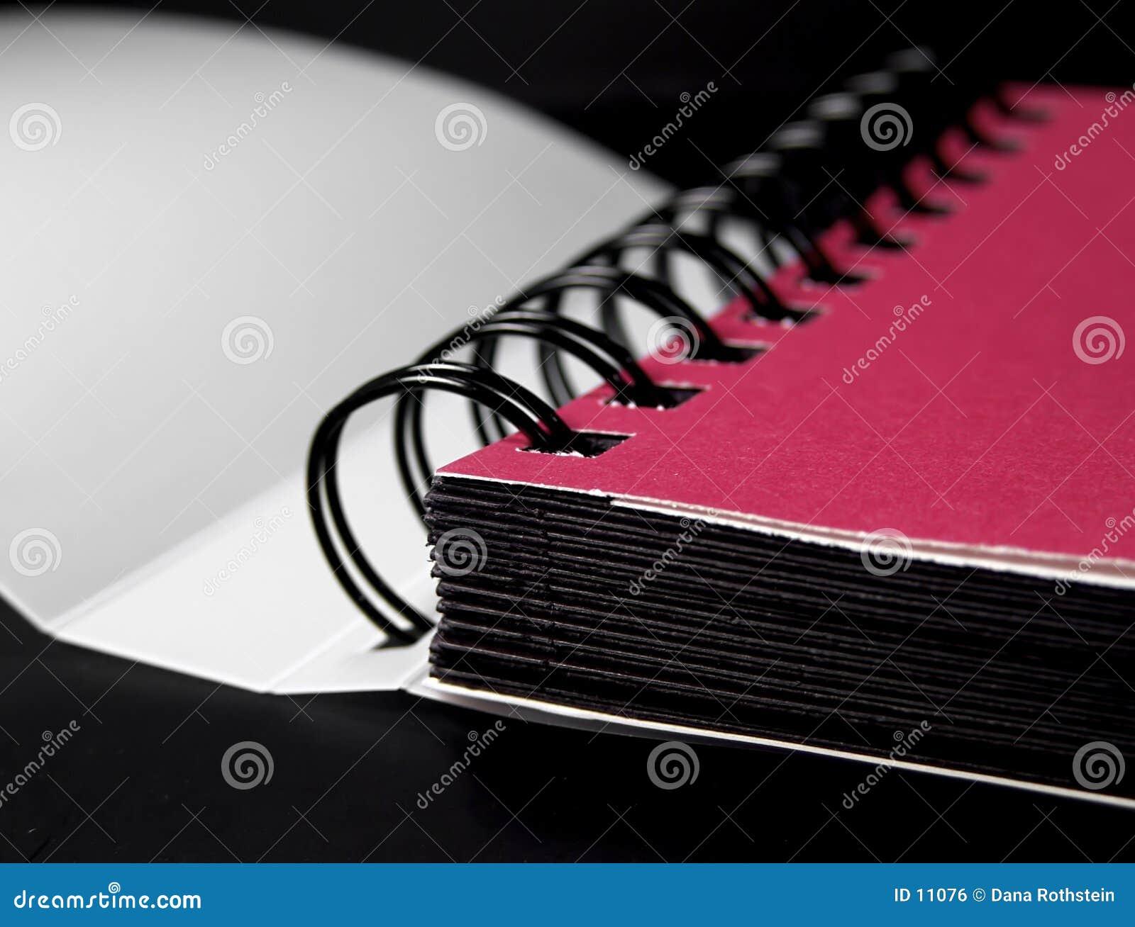 2个册页照片