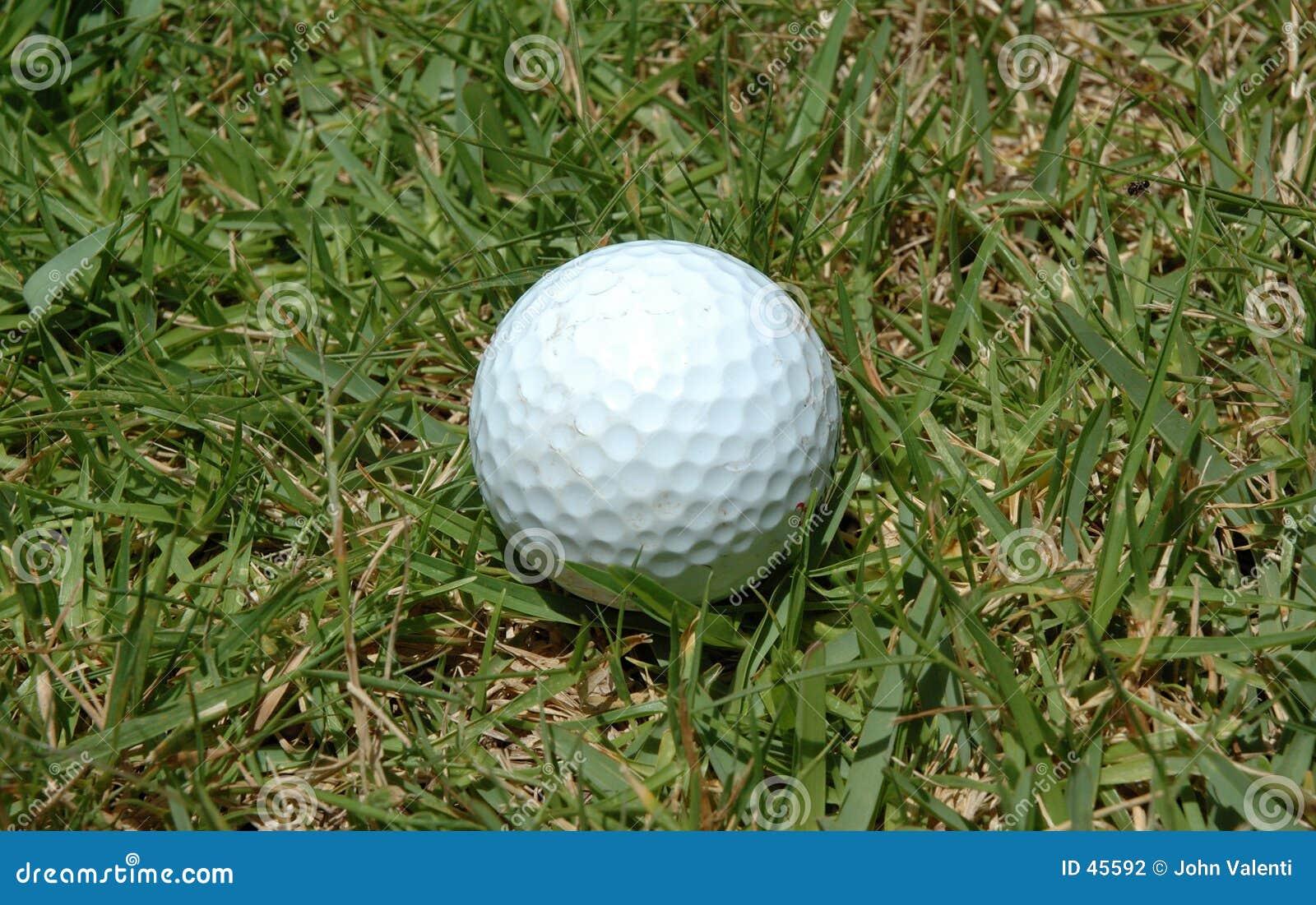 2个球高尔夫球