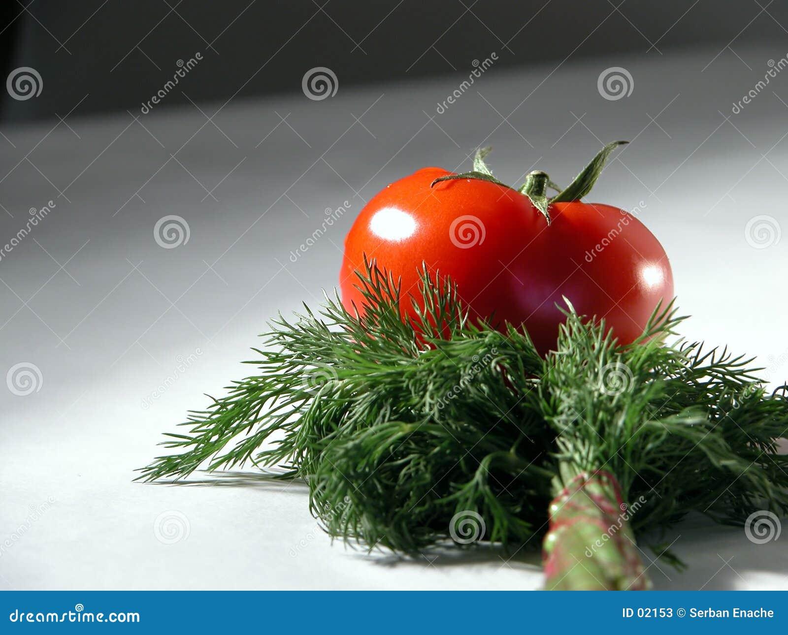 2莳萝新鲜的蕃茄