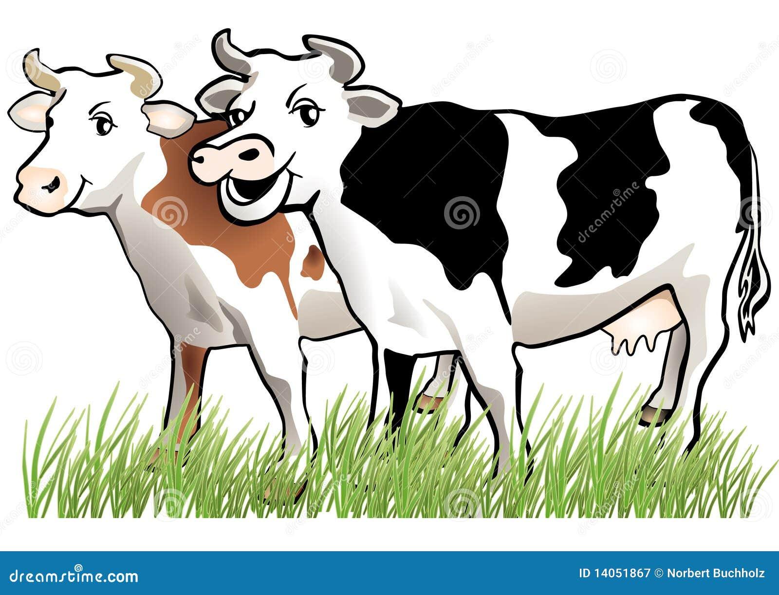 2 коровы счастливой
