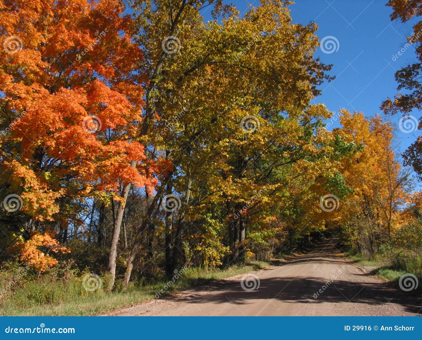 2 04 10 034 листь ландшафта осени