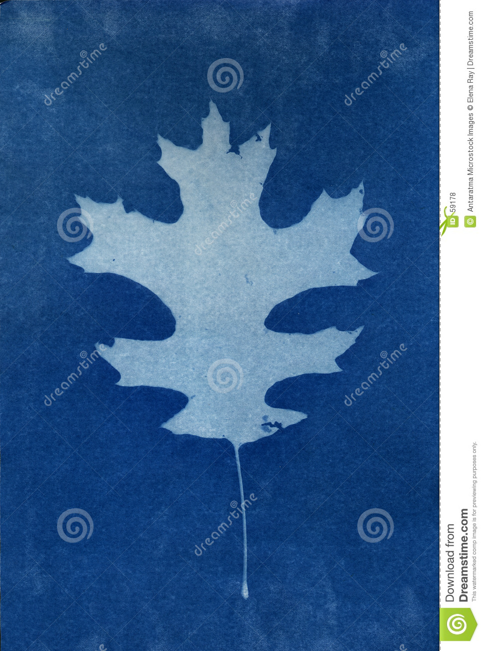 2 background leaf