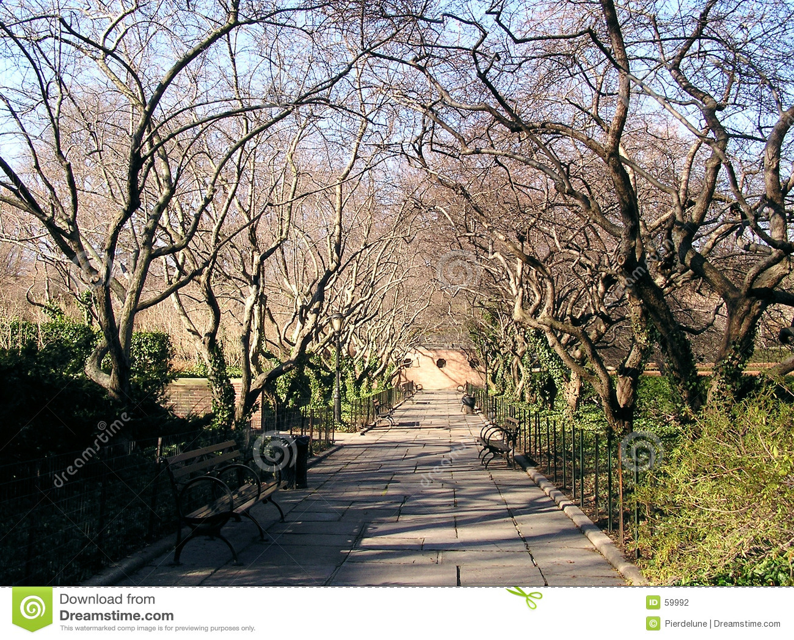 2 central park scenery