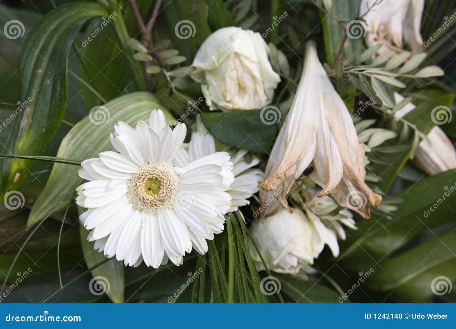 2 döda blommor