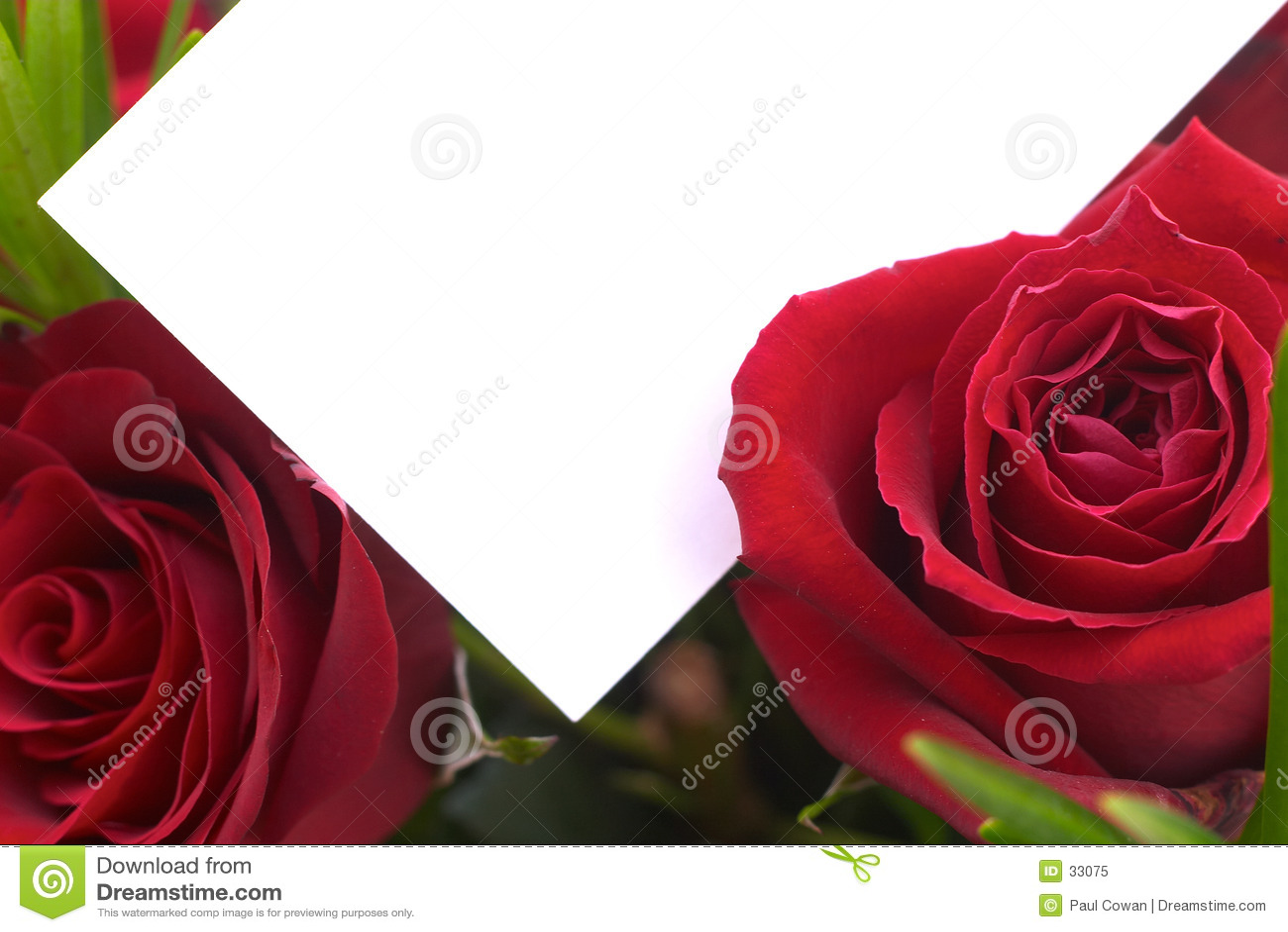 2 röda ro