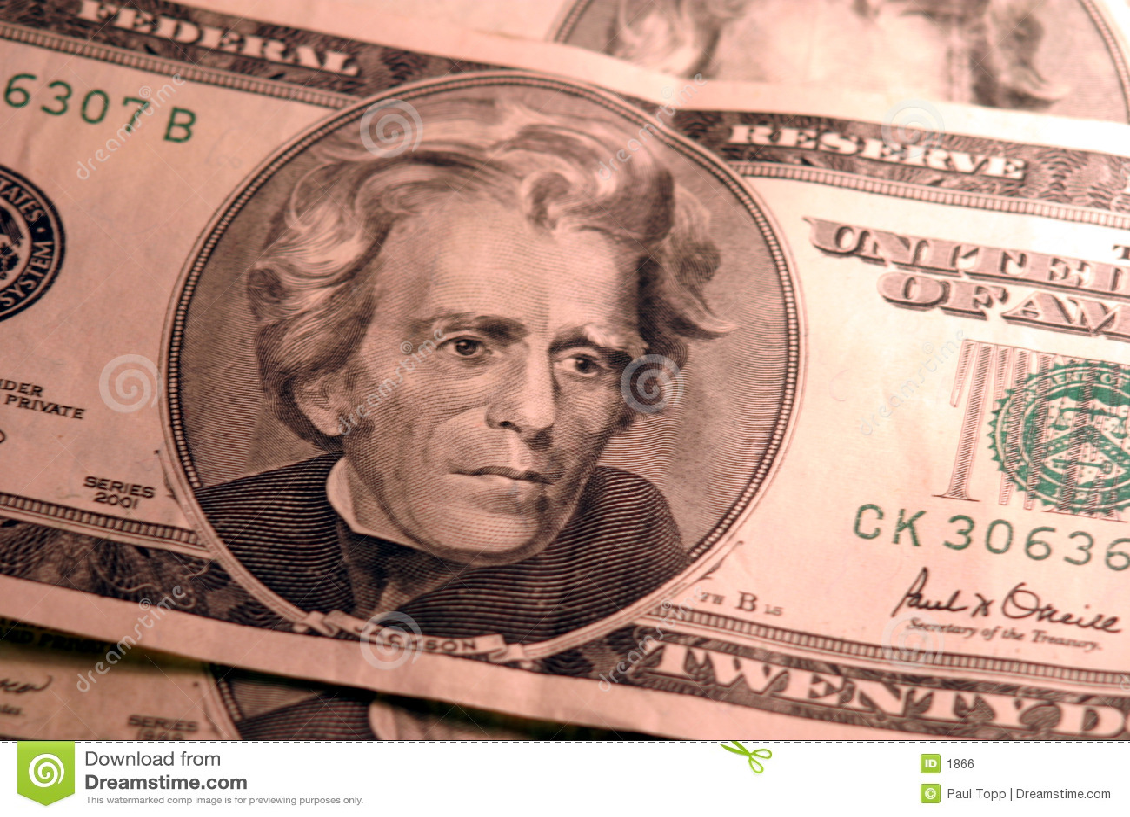 20 fatture del dollaro