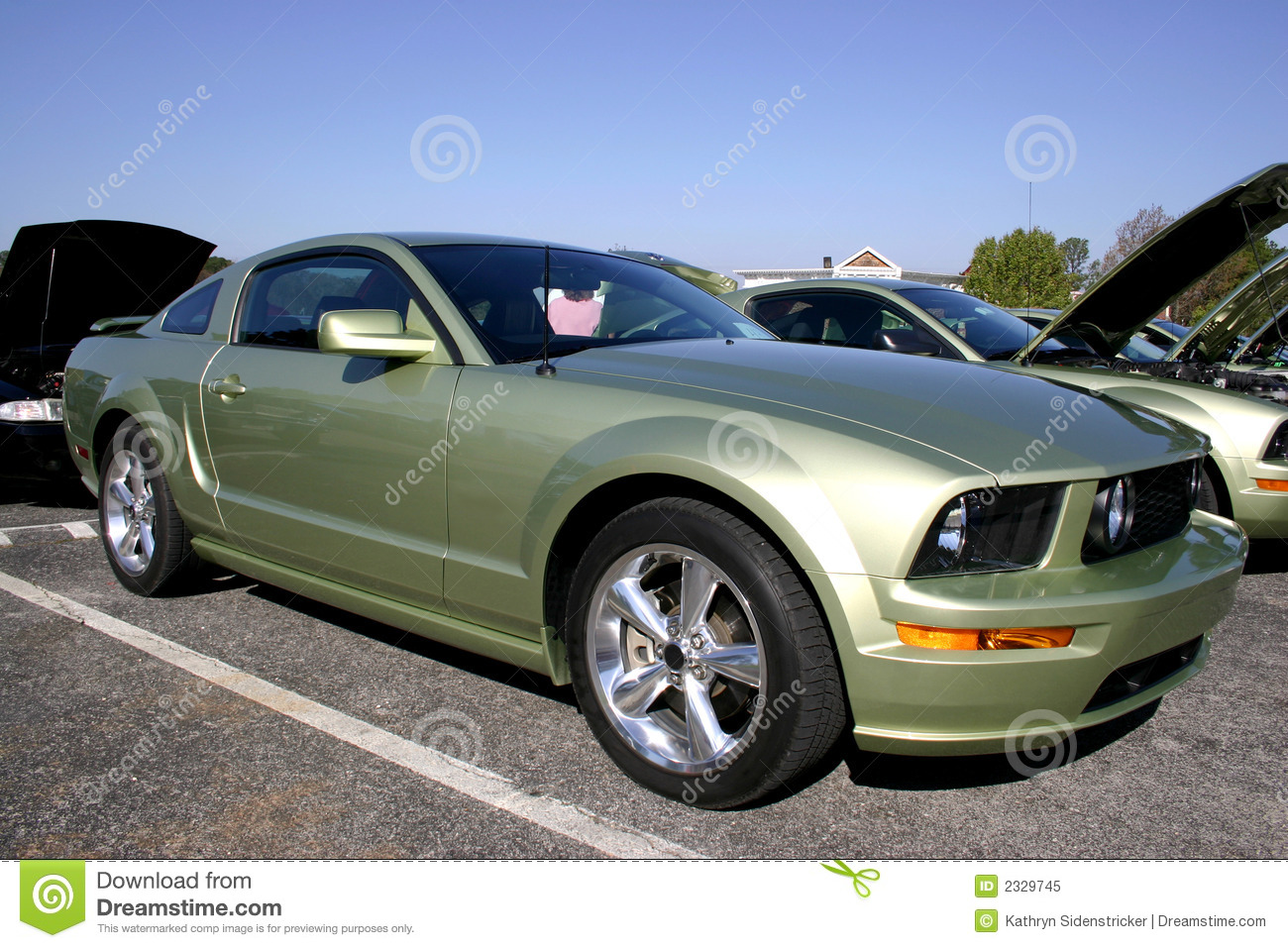 2005 ford mustang gt stock image image of auto pony. Black Bedroom Furniture Sets. Home Design Ideas