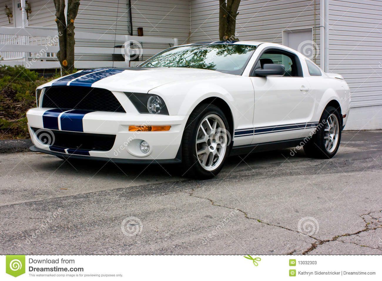 2009 ford mustang shelby cobra gt 500 white with blue racing strips front and side view aluminum wheels shaker hood