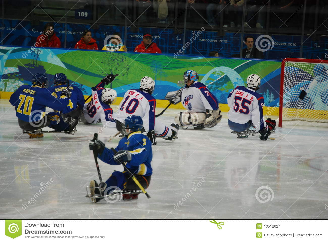 2010 Paralympic Winter Games