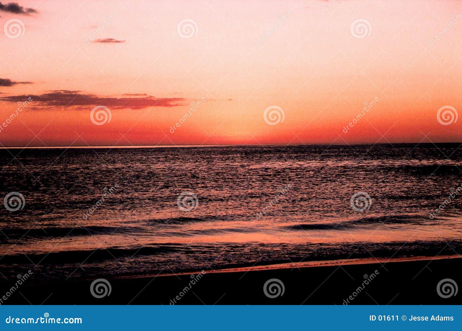 佛罗里达日落