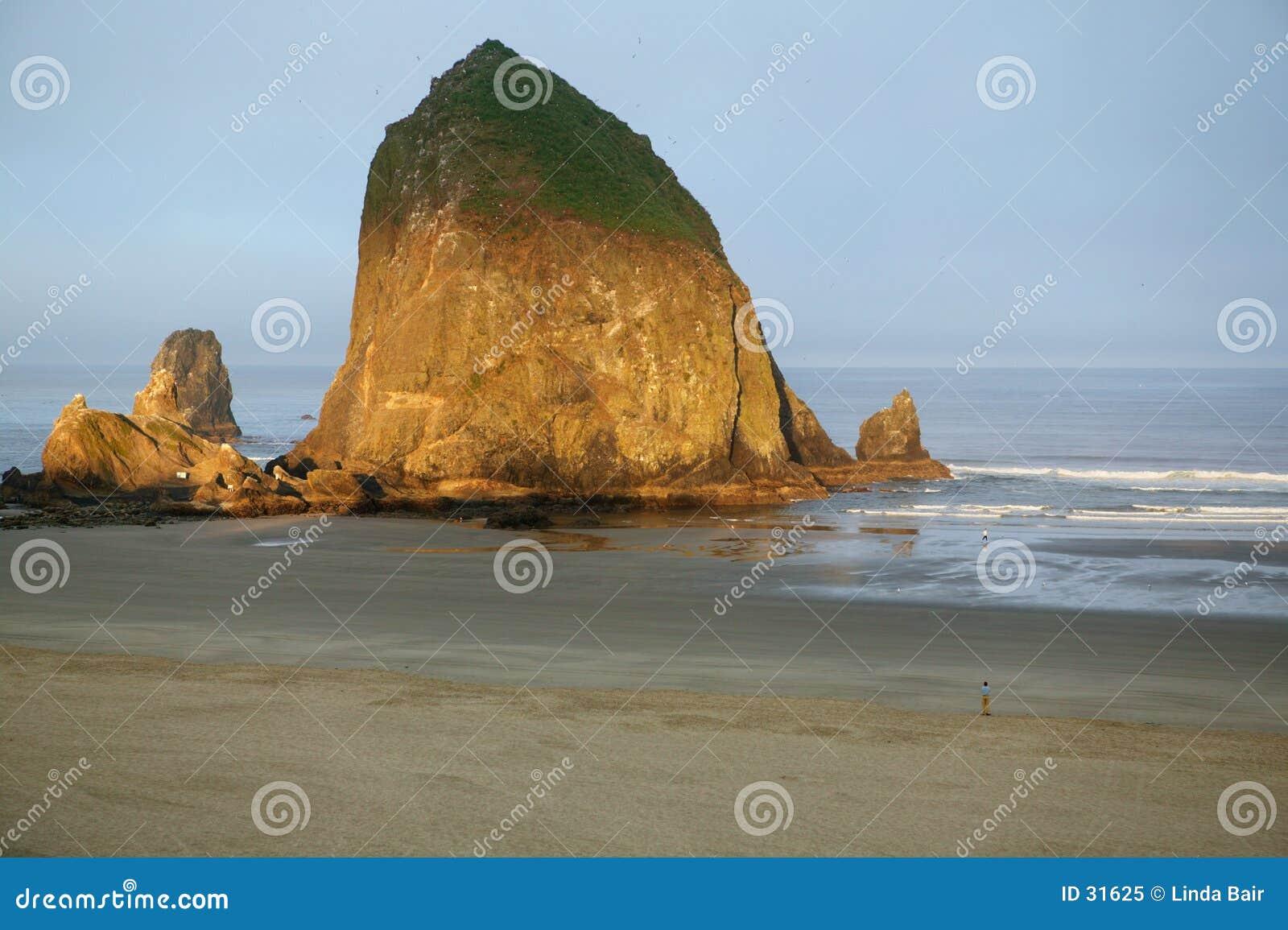 使大炮干草堆俄勒冈岩石靠岸