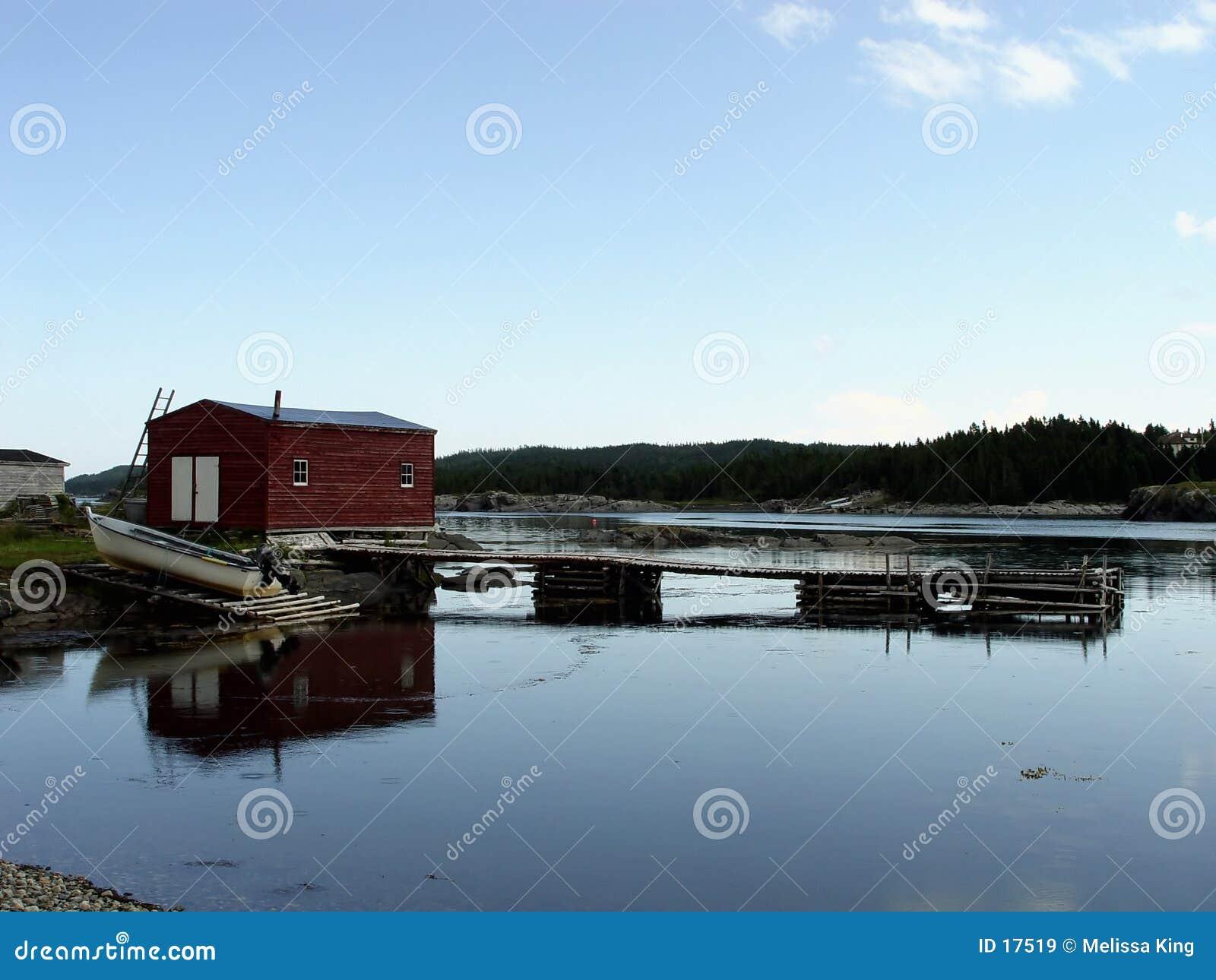 农村的纽芬兰