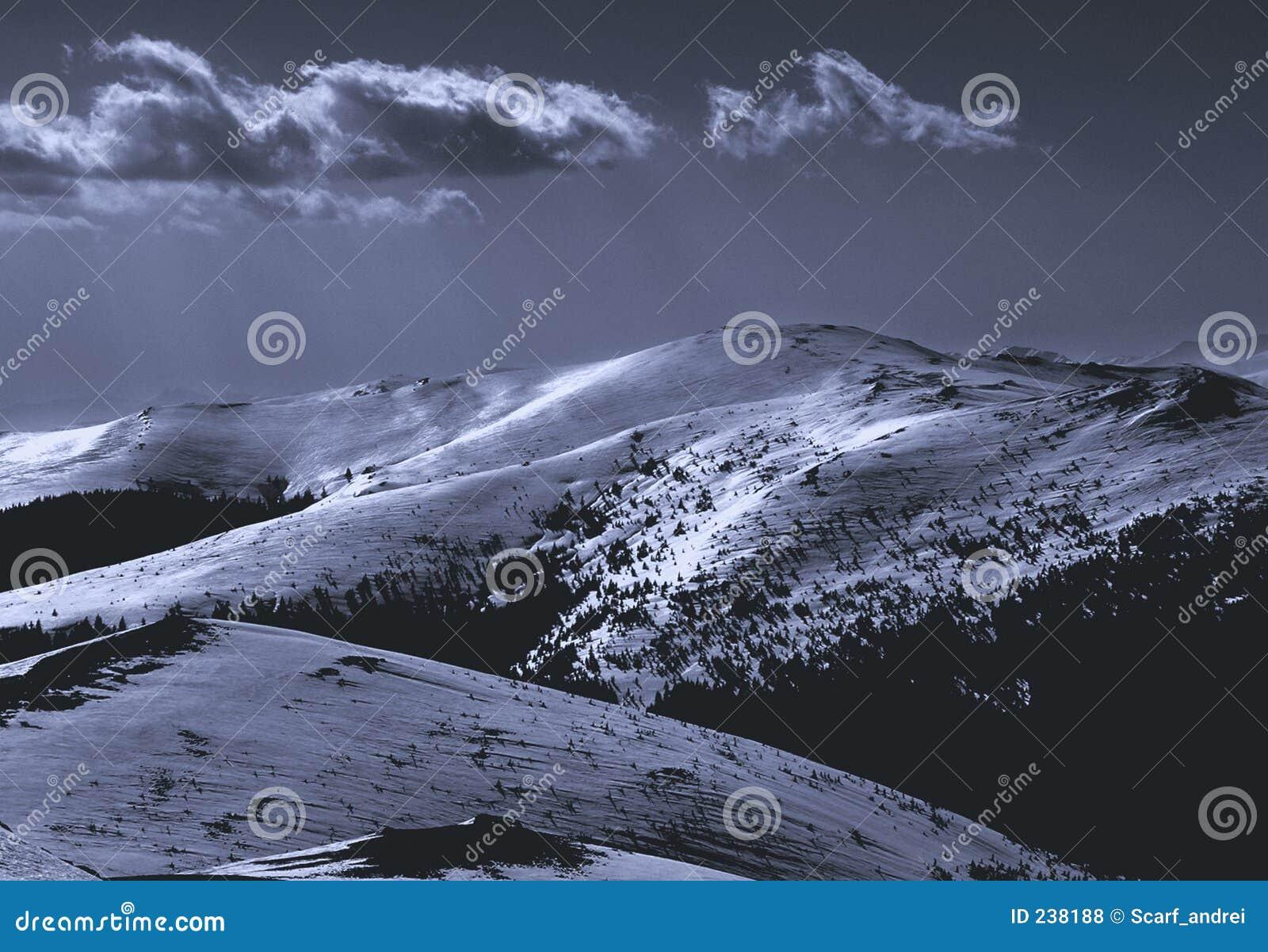 21 berg