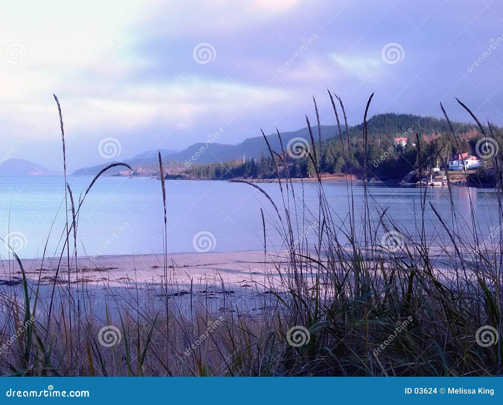 含沙的海滩