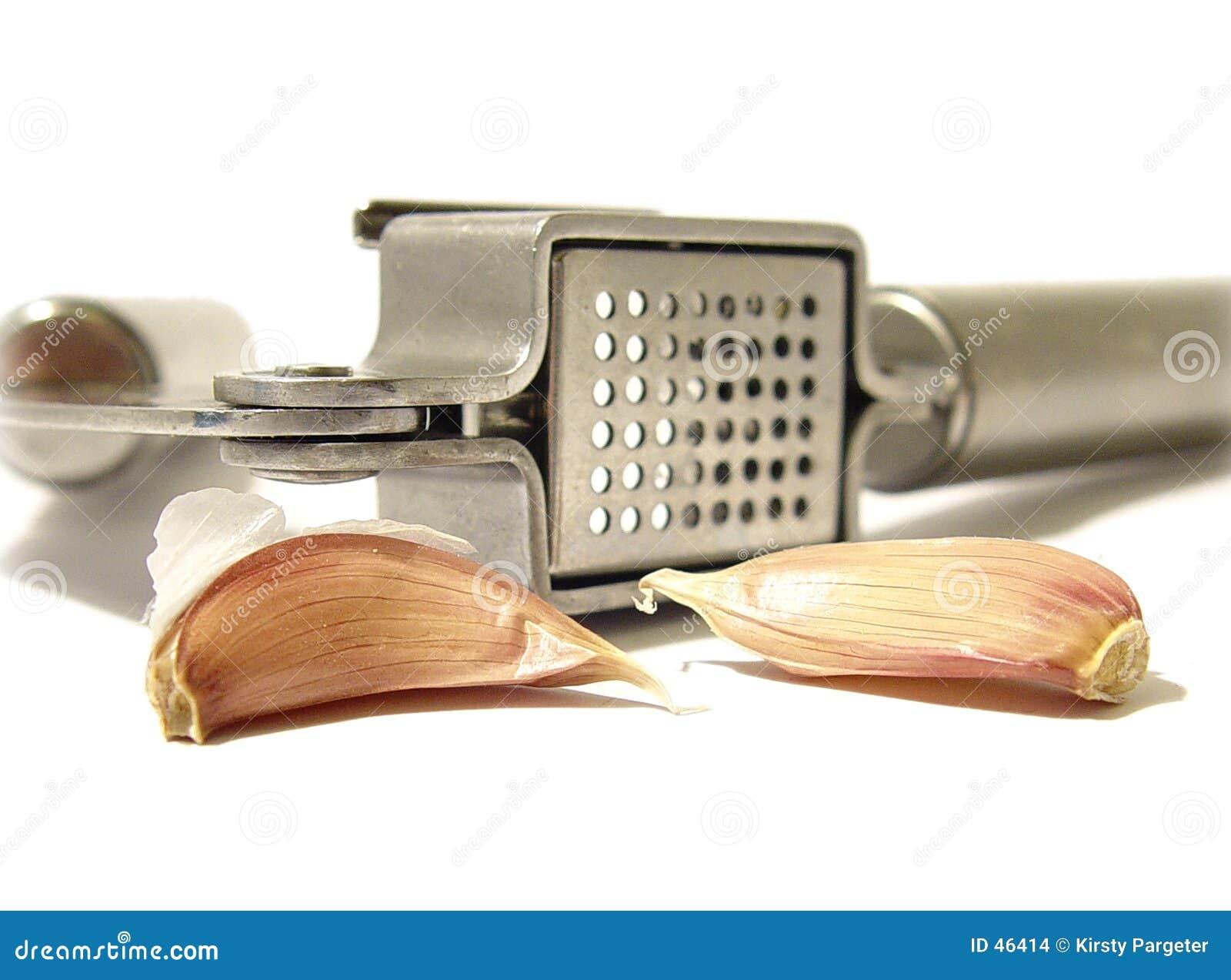 大蒜压榨机