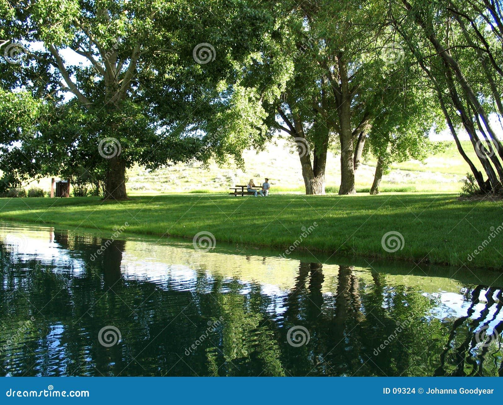 晴朗日的野餐