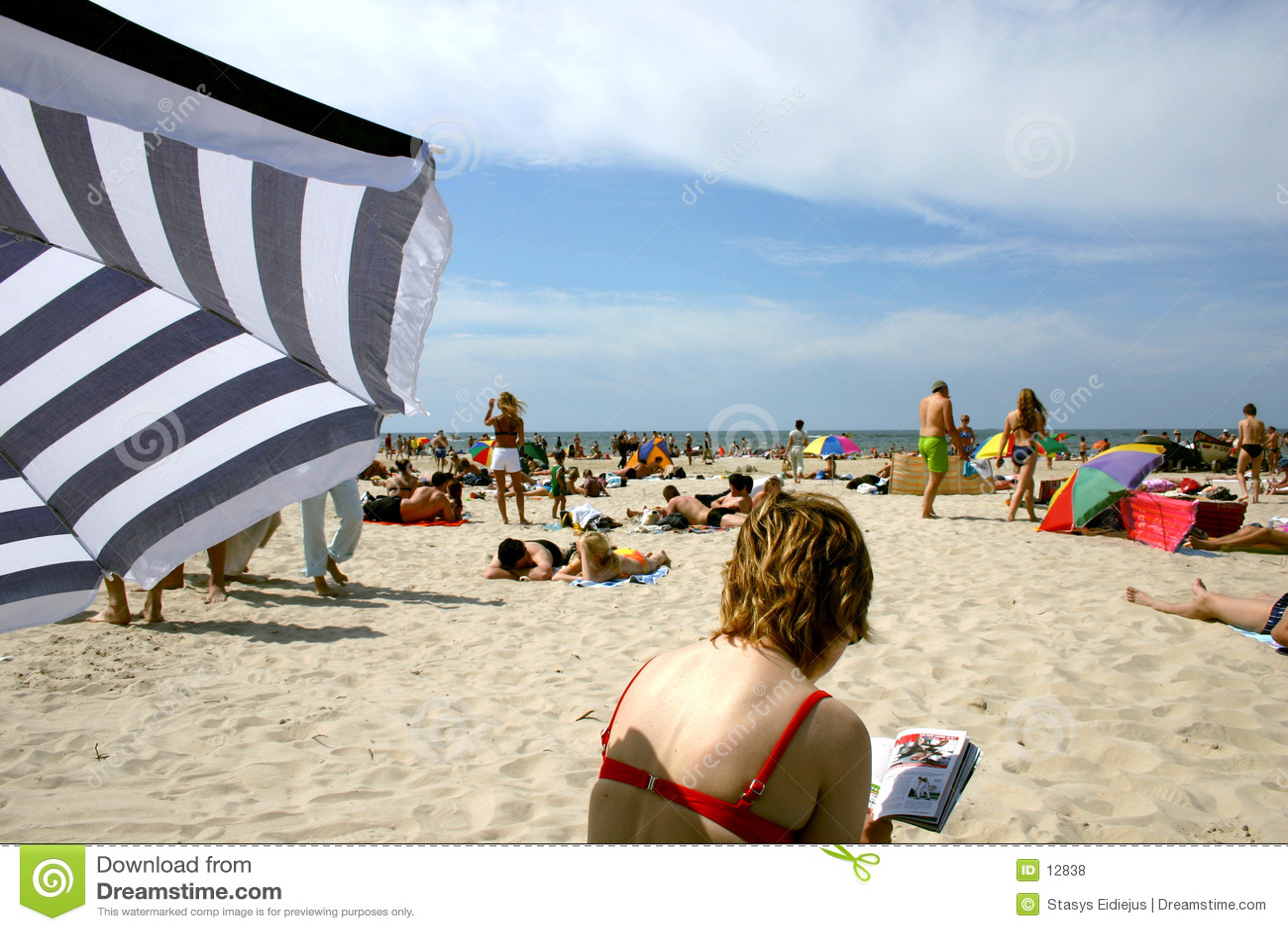 海滩iii夏天