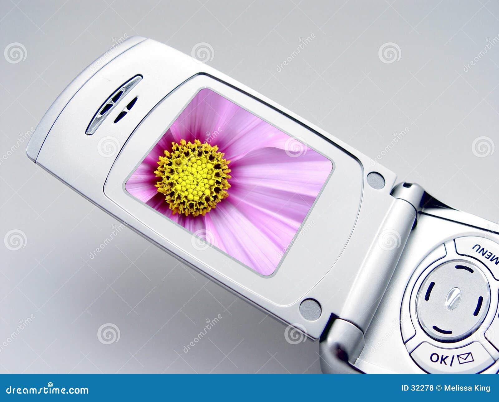 照相机电话