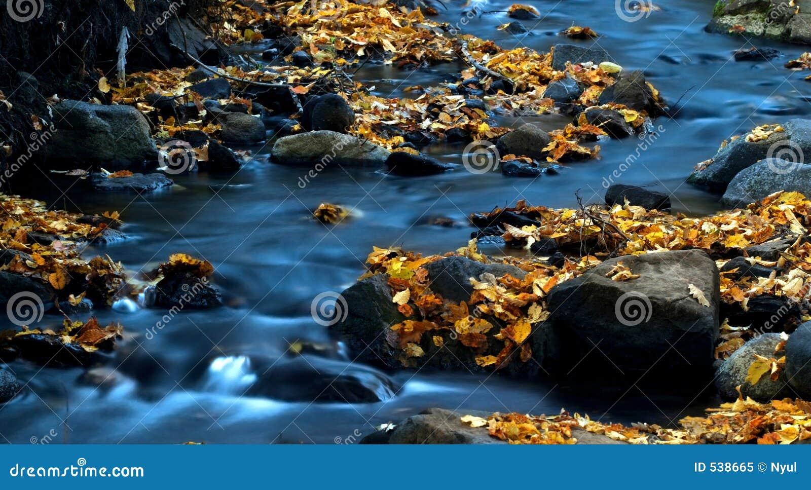 Download 3片叶子水 库存图片. 图片 包括有 迅速, 洪流, 蓝色, 瀑布, 秋天, 自治权, 森林, 生活, 级联 - 538665