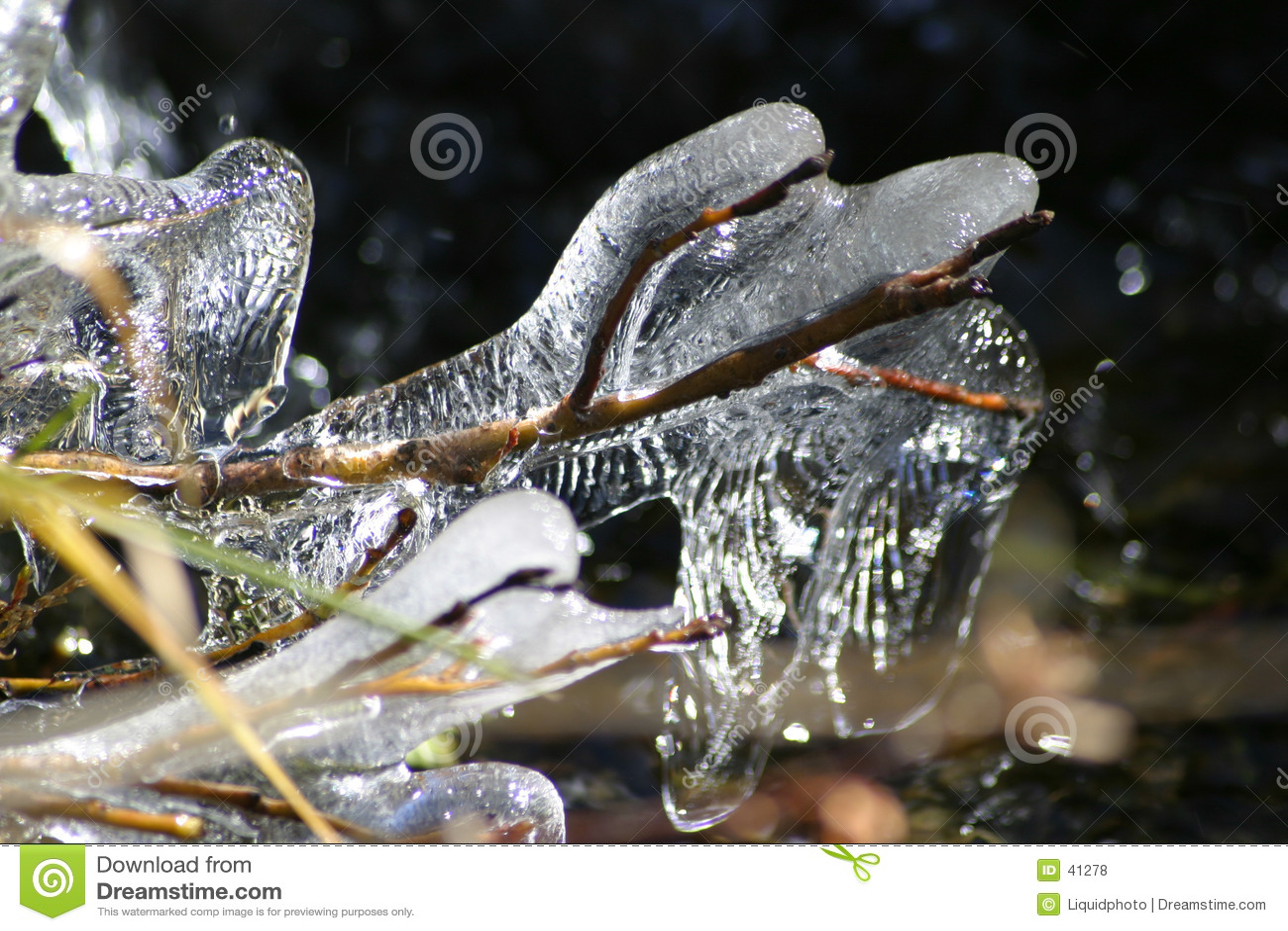 3 вербы льда