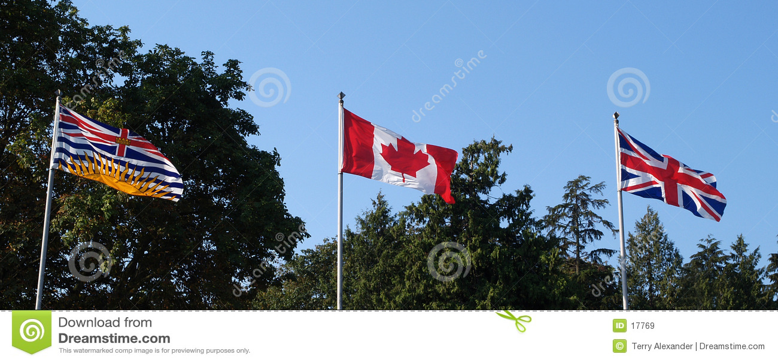 3 флага