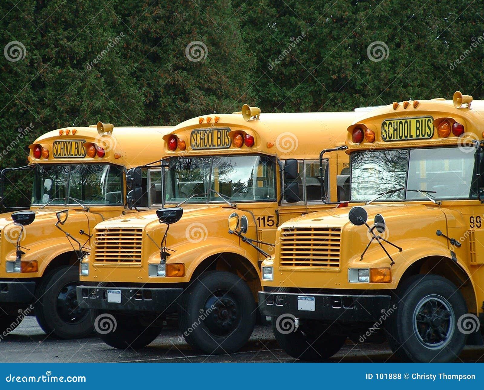 3 auto escolares