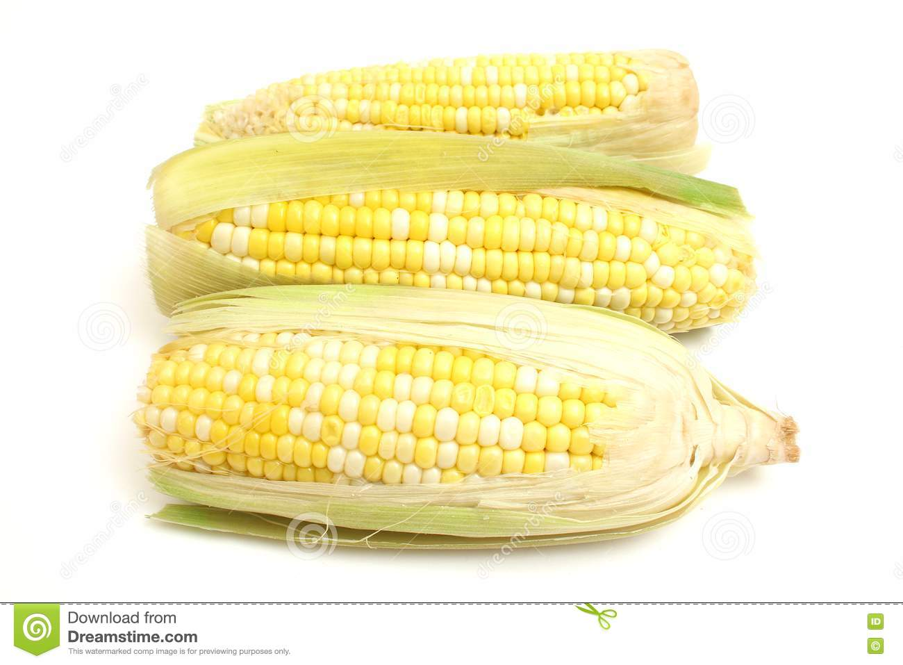 Free Stock Photography 3 Ears Of Corn Picture Image 2350137