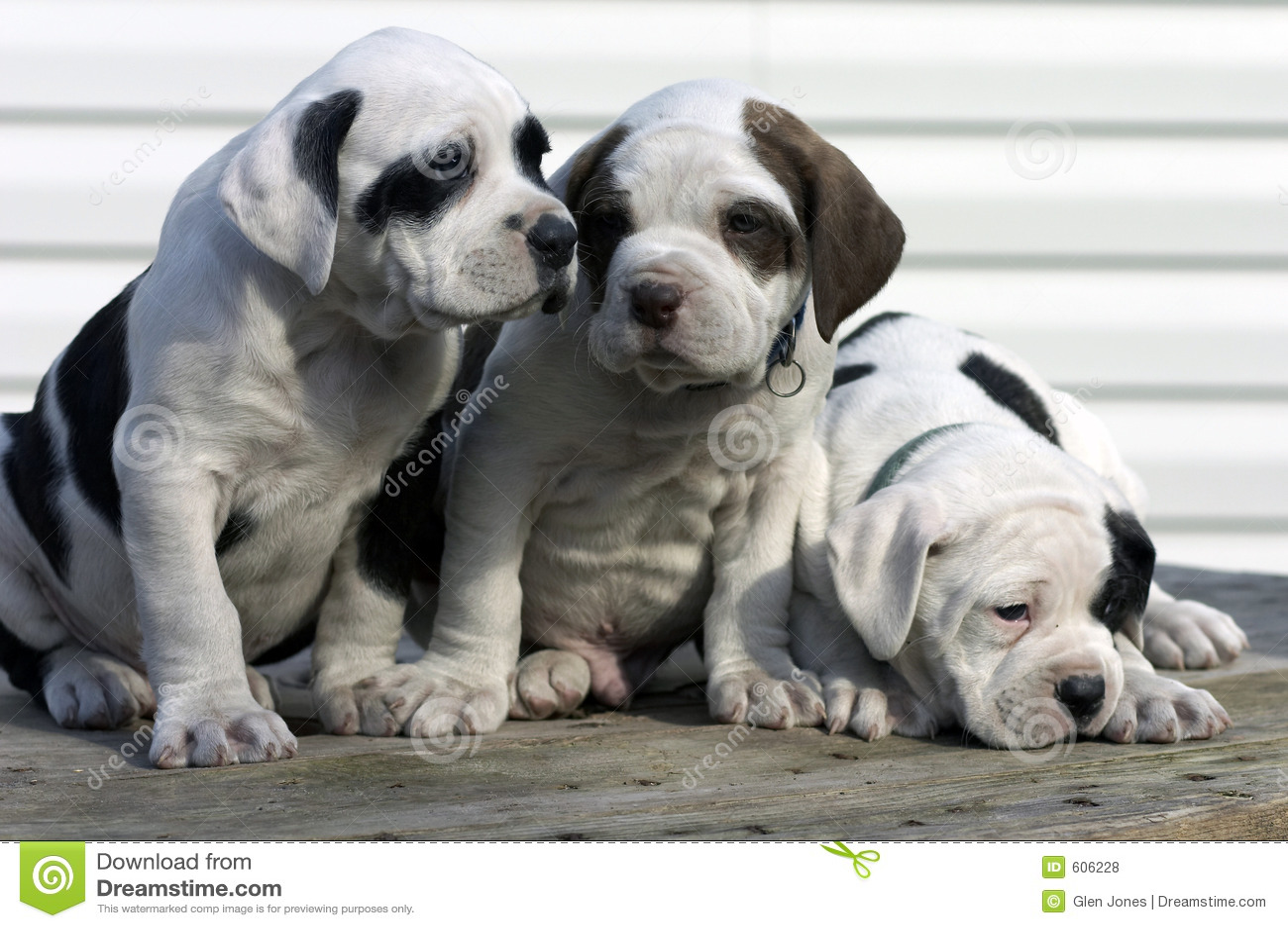 3 jongen
