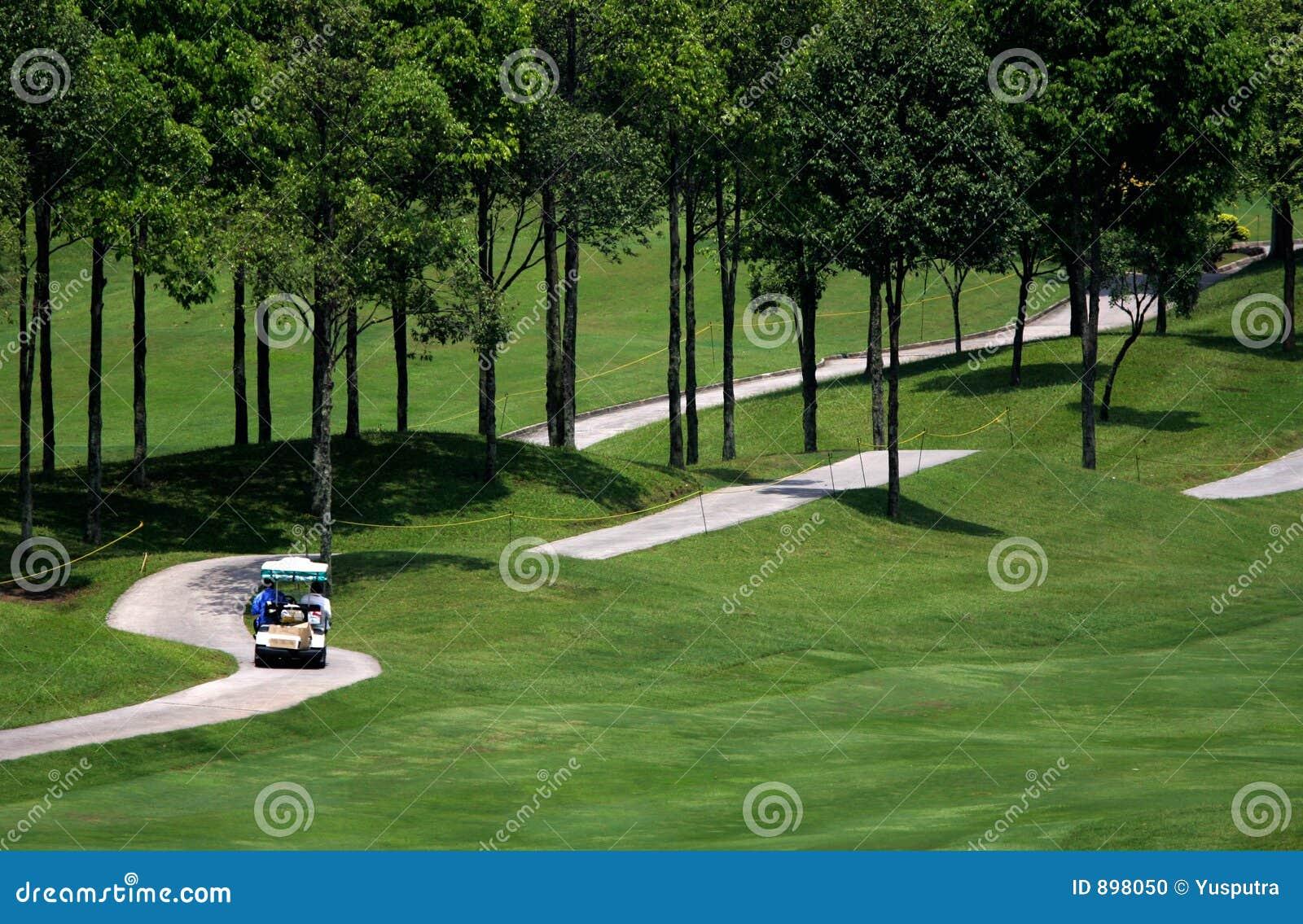 3 kursy golfa