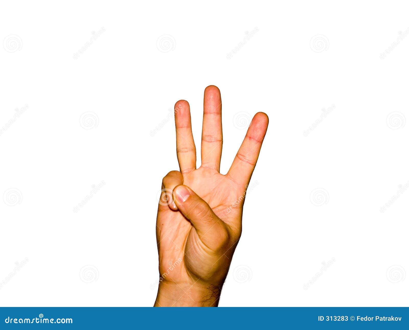3 palców