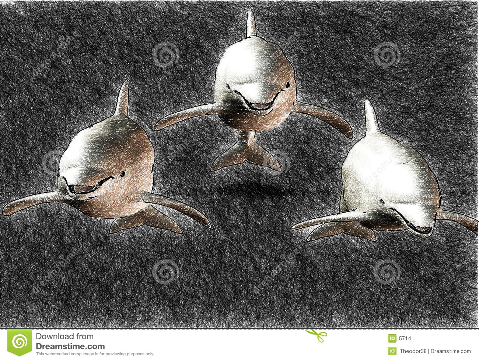 3 sketch delfinów