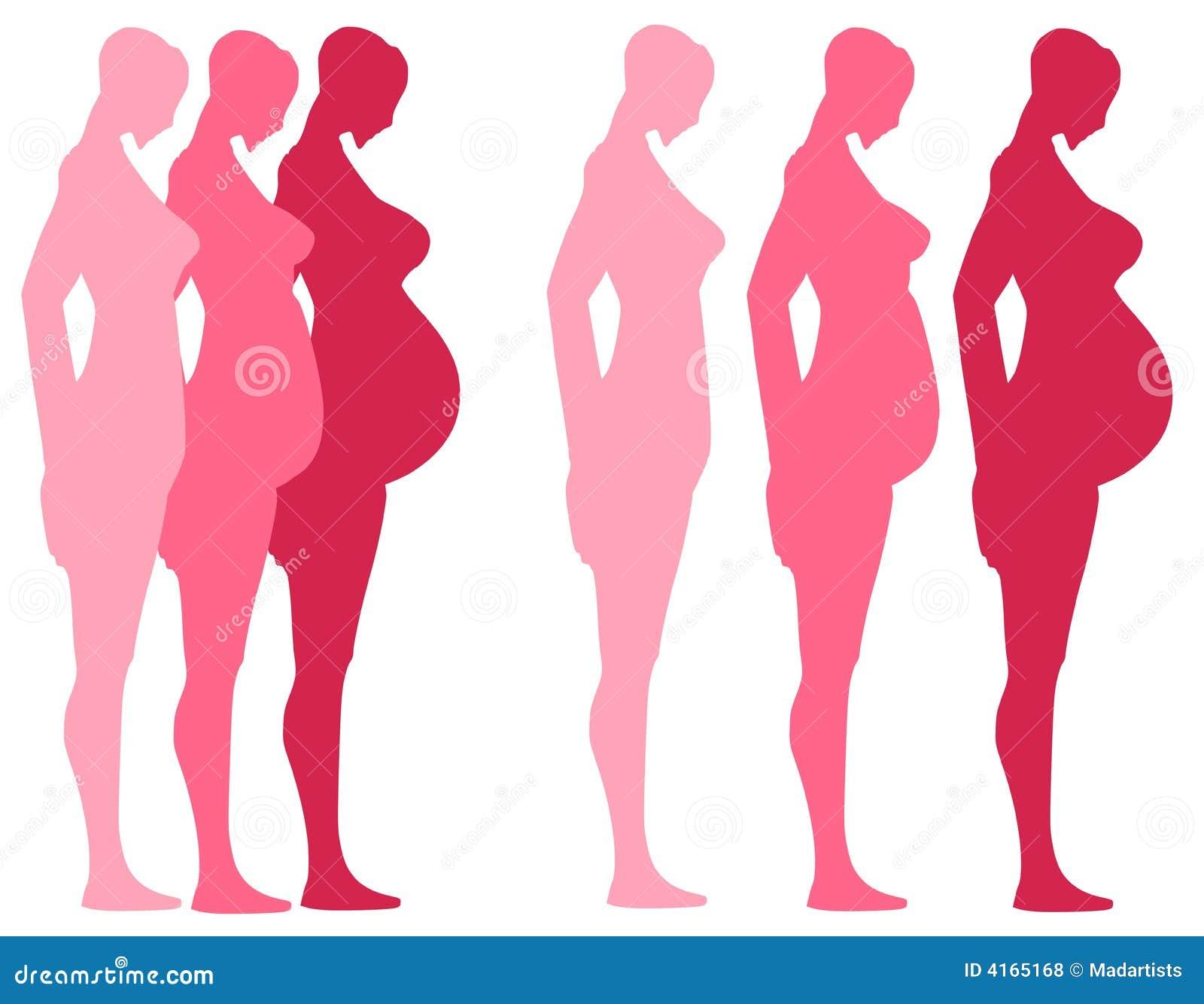 3 trimester der schwangerschaft lizenzfreie stockfotos. Black Bedroom Furniture Sets. Home Design Ideas