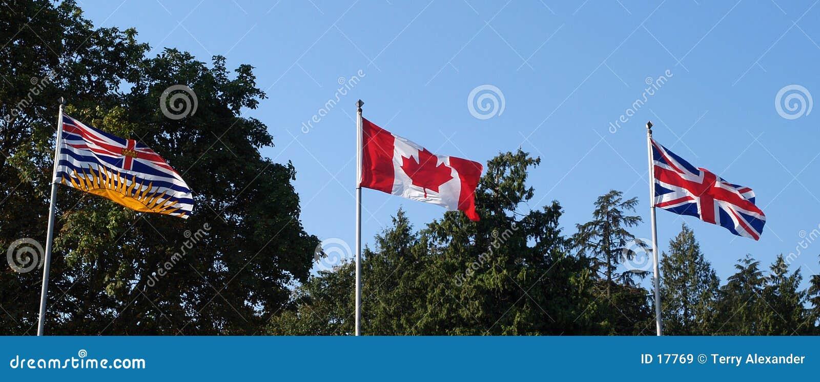 3 vlaggen
