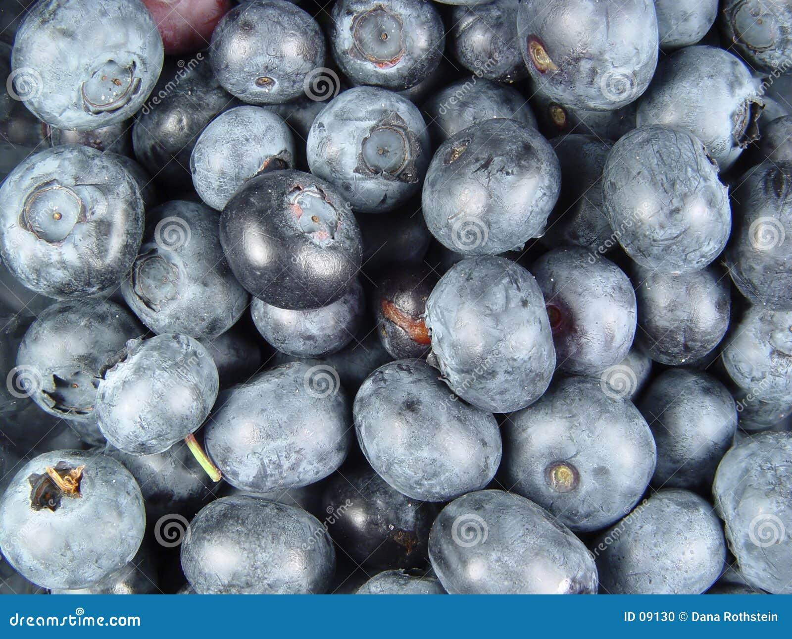蓝色的浆果