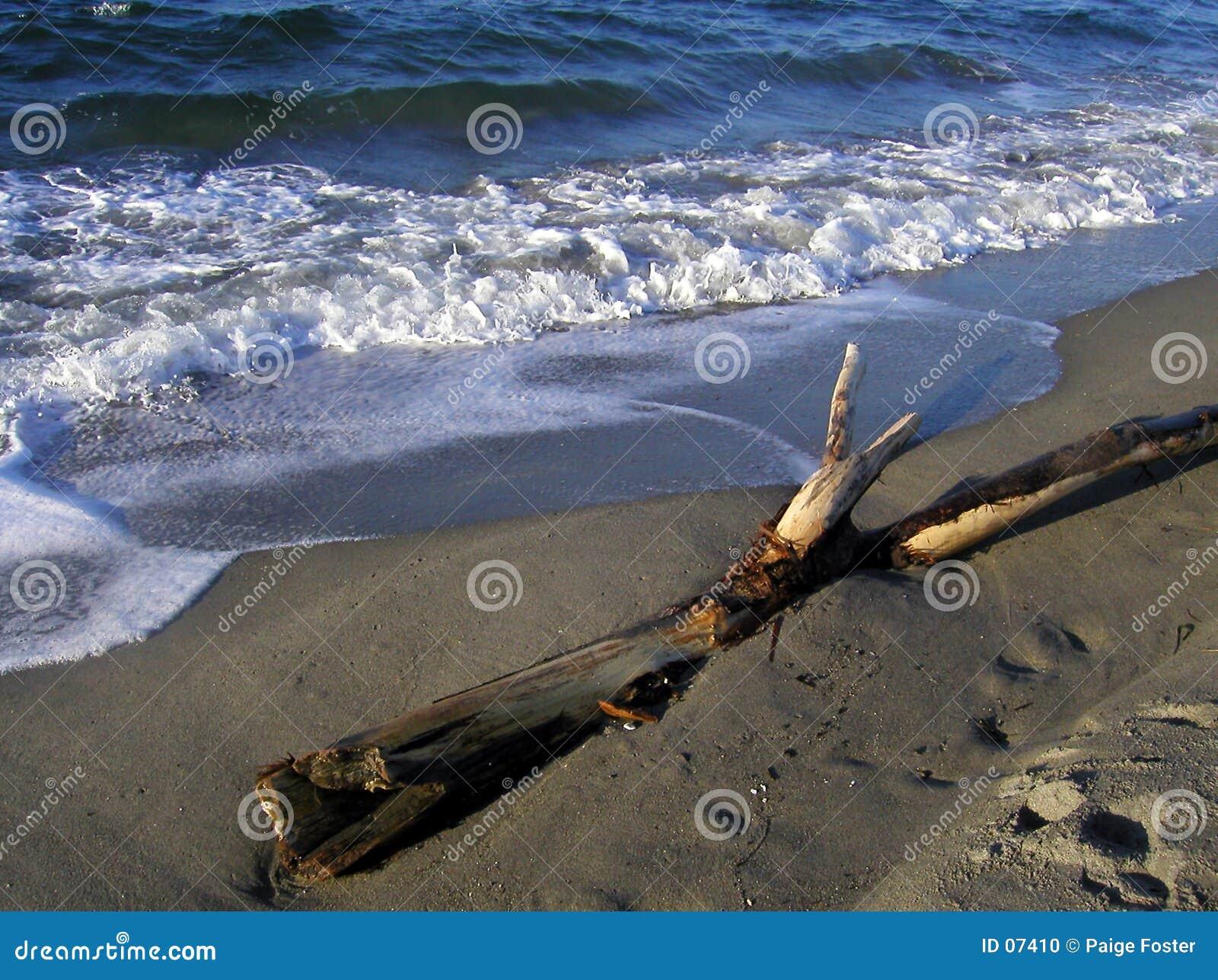 西北的海滩