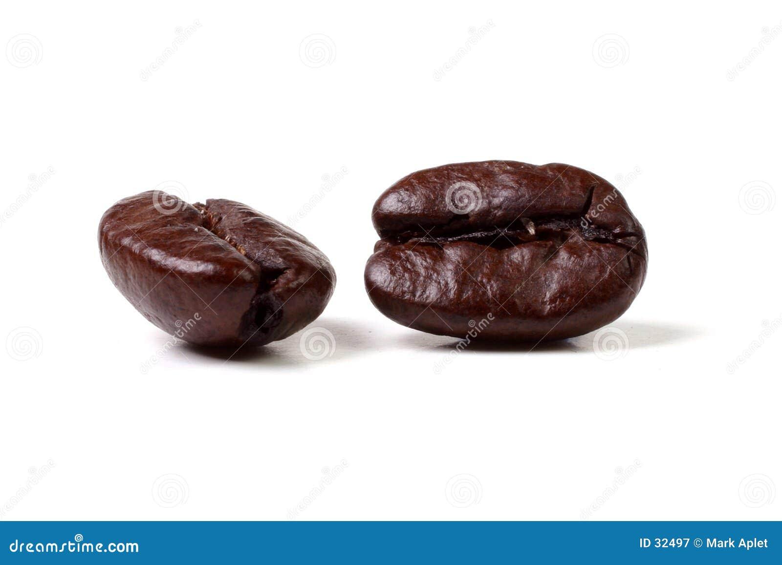 豆Java