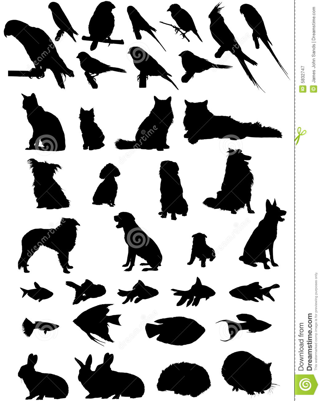 36 vector pet silhouettes 5832747