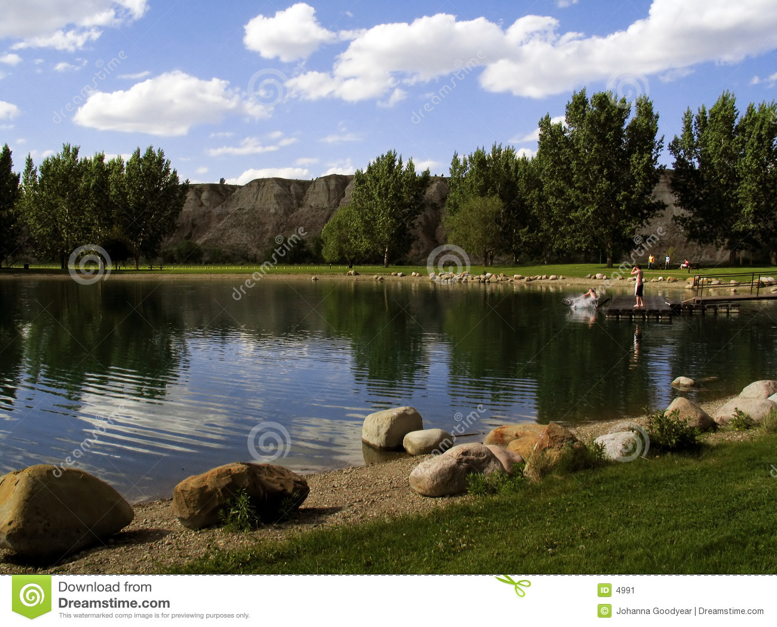 风景的公园
