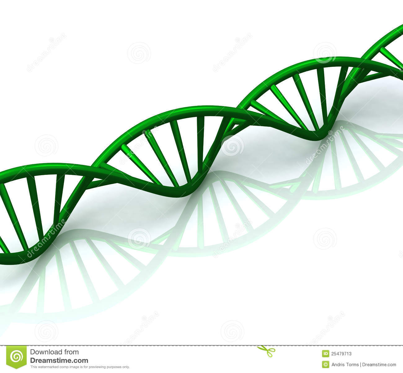 Stock Photos 3d Abstract Green Dna Spiral Reflection Image25479713 on Green Spiral Shape