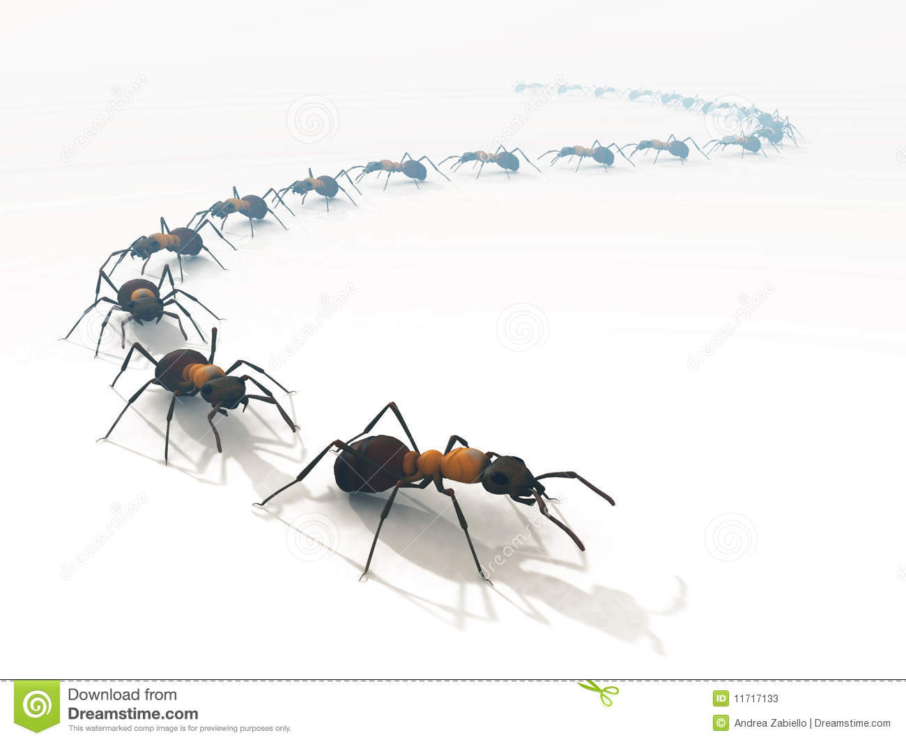 3d ants line queue white isolated