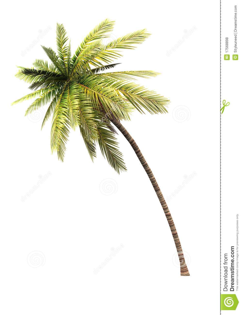 3D Coconut Tree 02 Royalty Free Stock Photos - Image: 17568898
