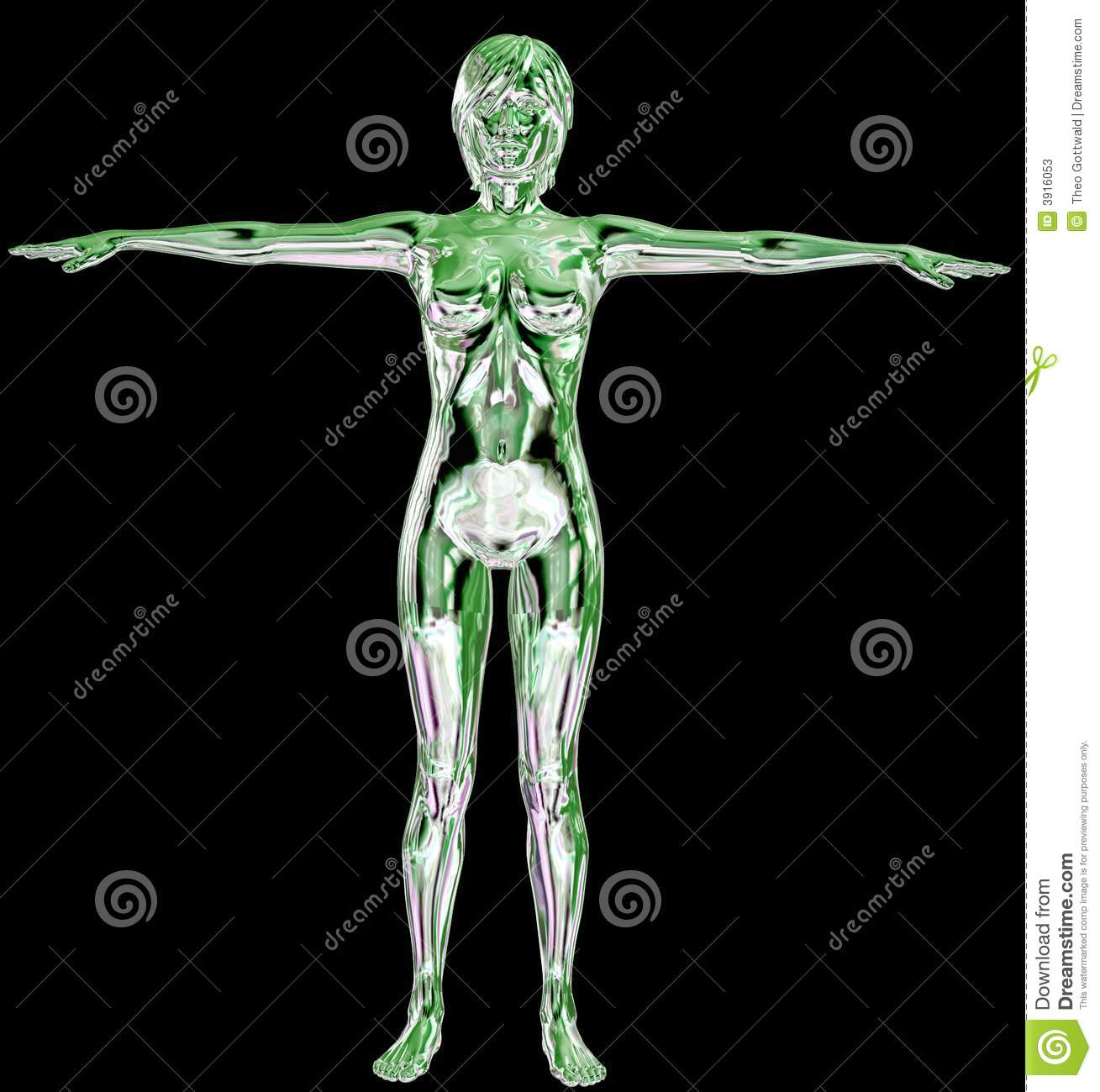3D Female Body stock illustration. Illustration of shiny - 3916053