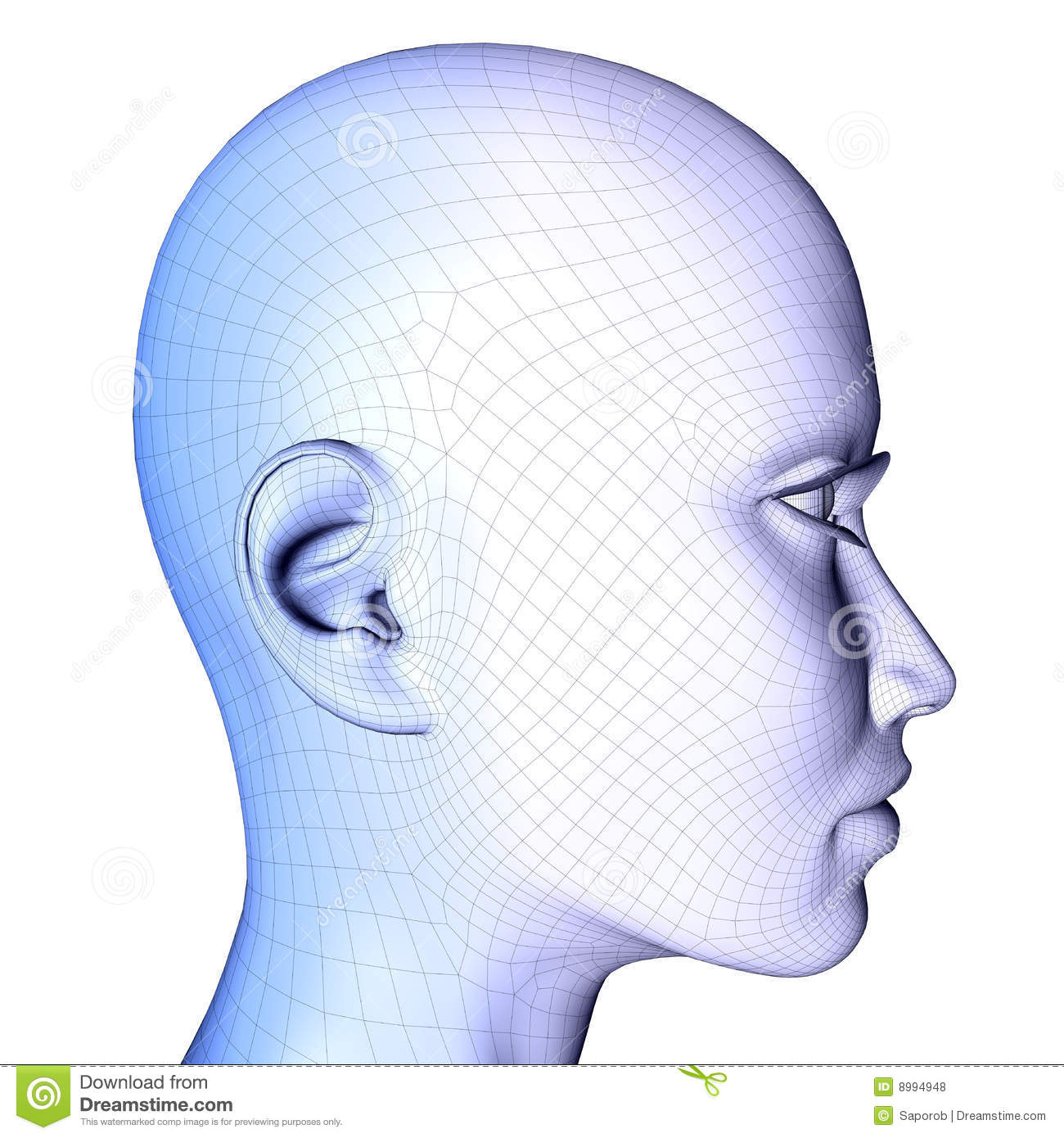 3d female face Wireframe stock illustration. Illustration of lines ...