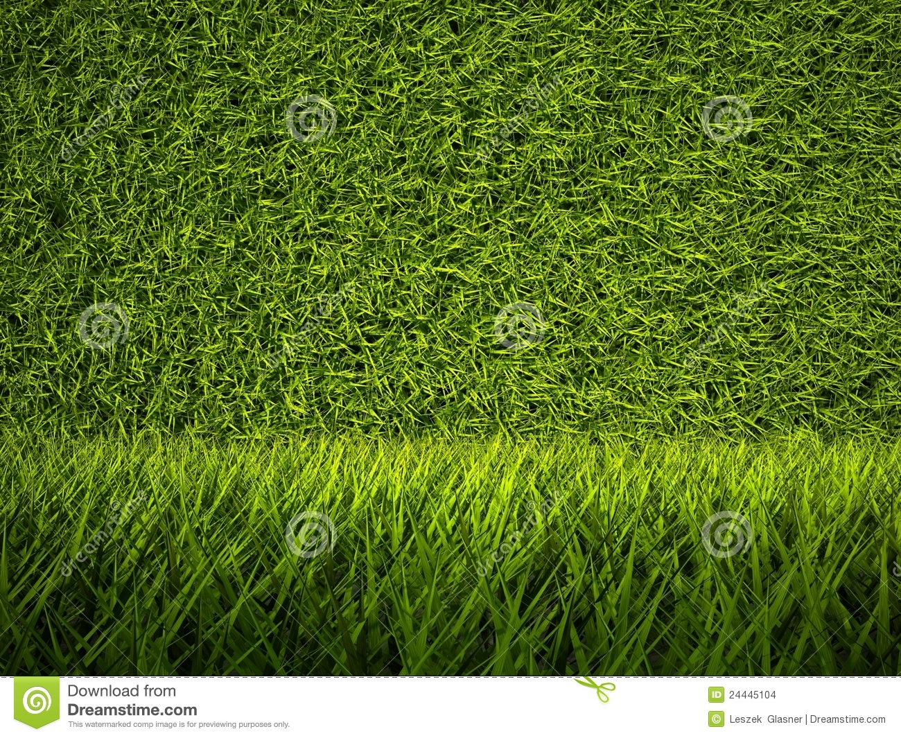 grass background texture - photo #32