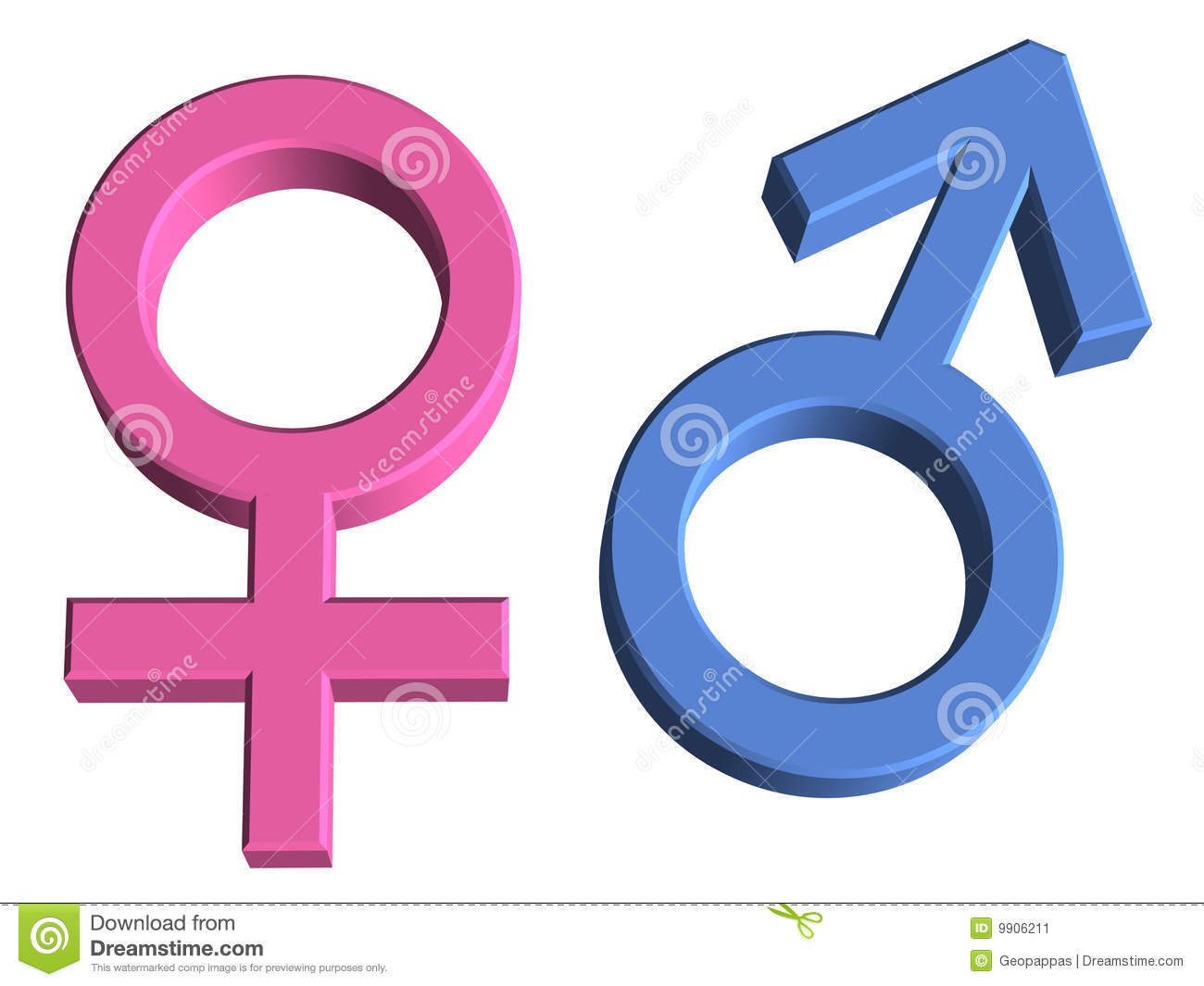 female gender genders male