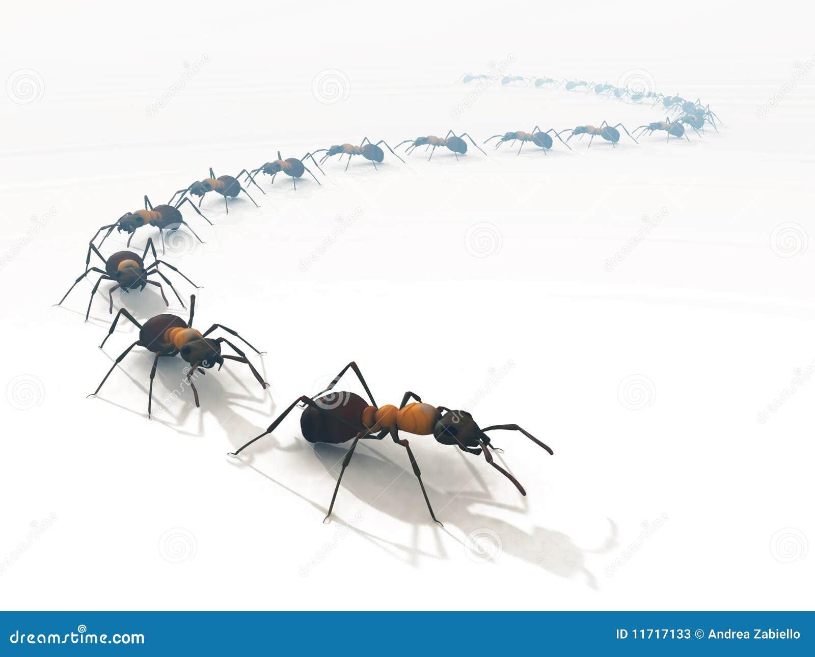 3d mrówki odizolowywający kreskowy kolejki biel