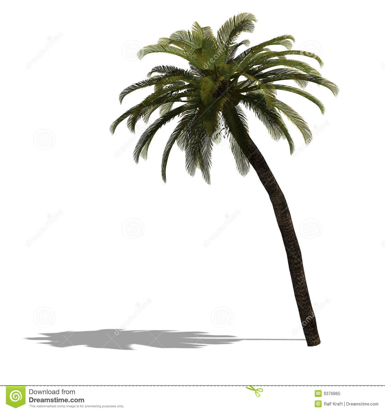 how to make a big palm tree