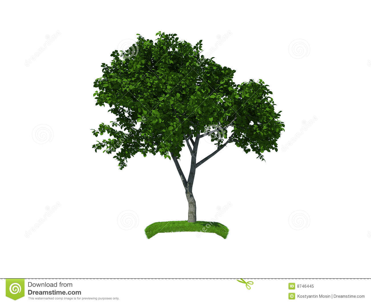 3d render of the small tree royalty free stock photo for Short trees