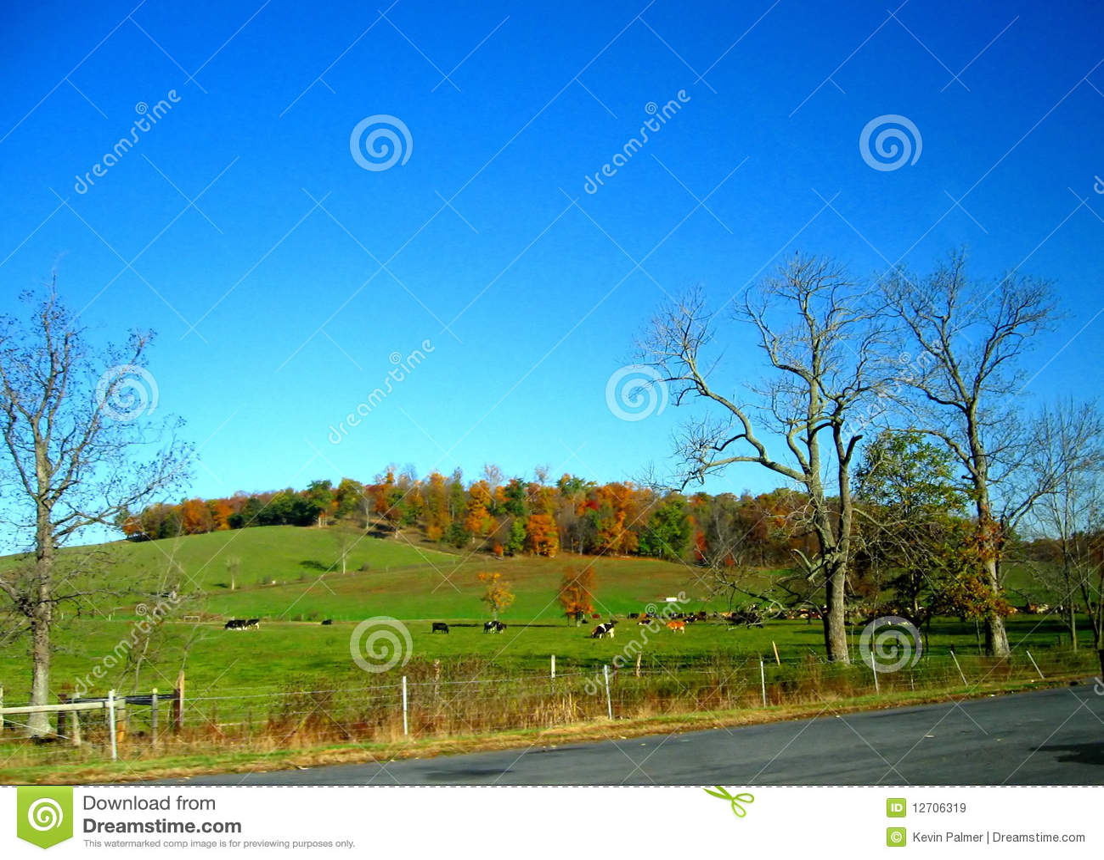4 jesień Pennsylvania
